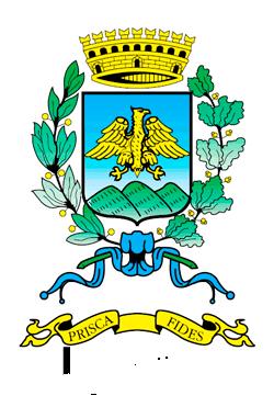 logo Comune di Pavullo nF
